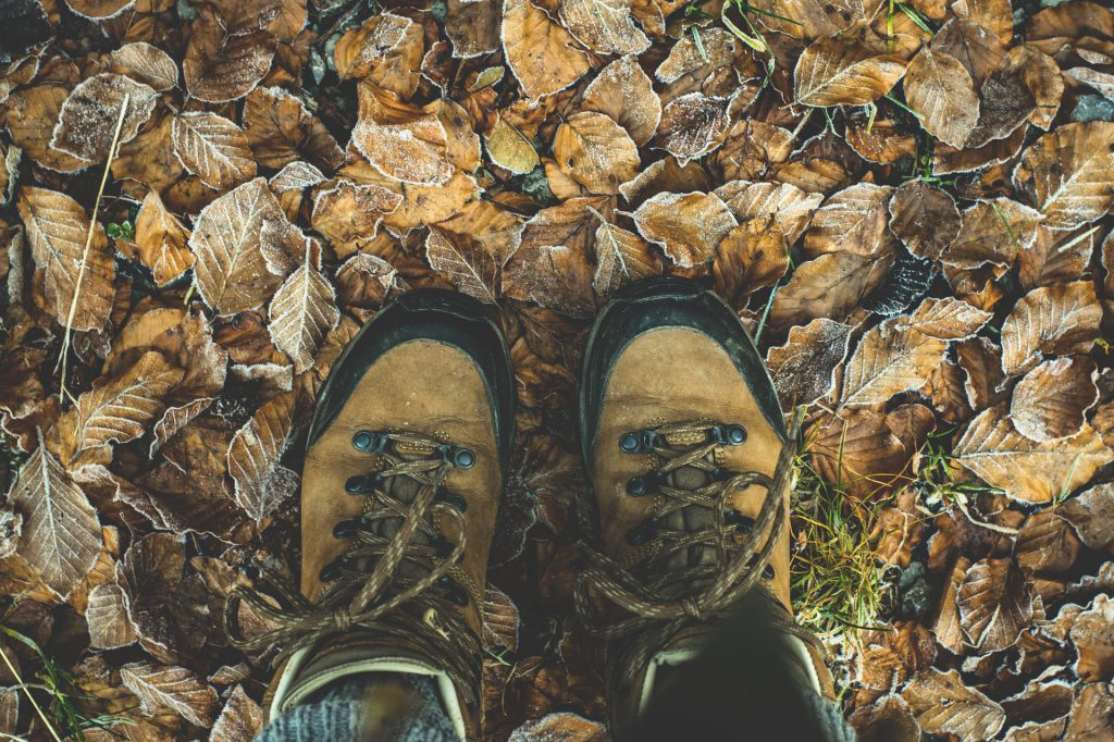 Hiking boots and leaves