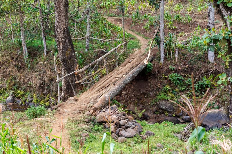 Hike to Materuni WAterfall Tanzania