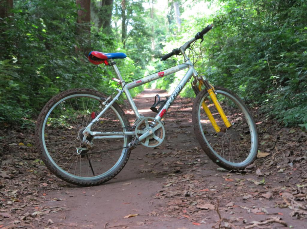 Mountain bike Rua Forest Tanzania