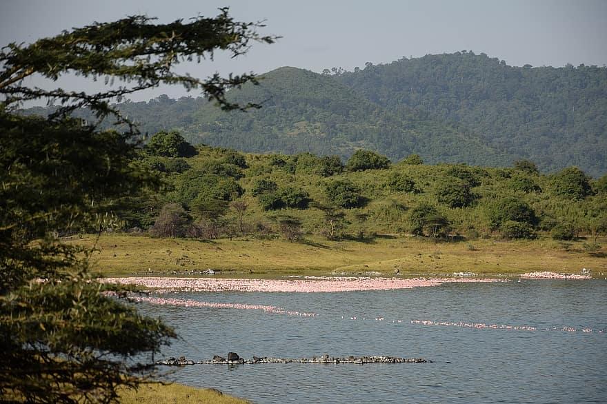 Momela Lakes Tanzania