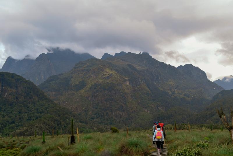 Hiking in the Rwenzori Mountains