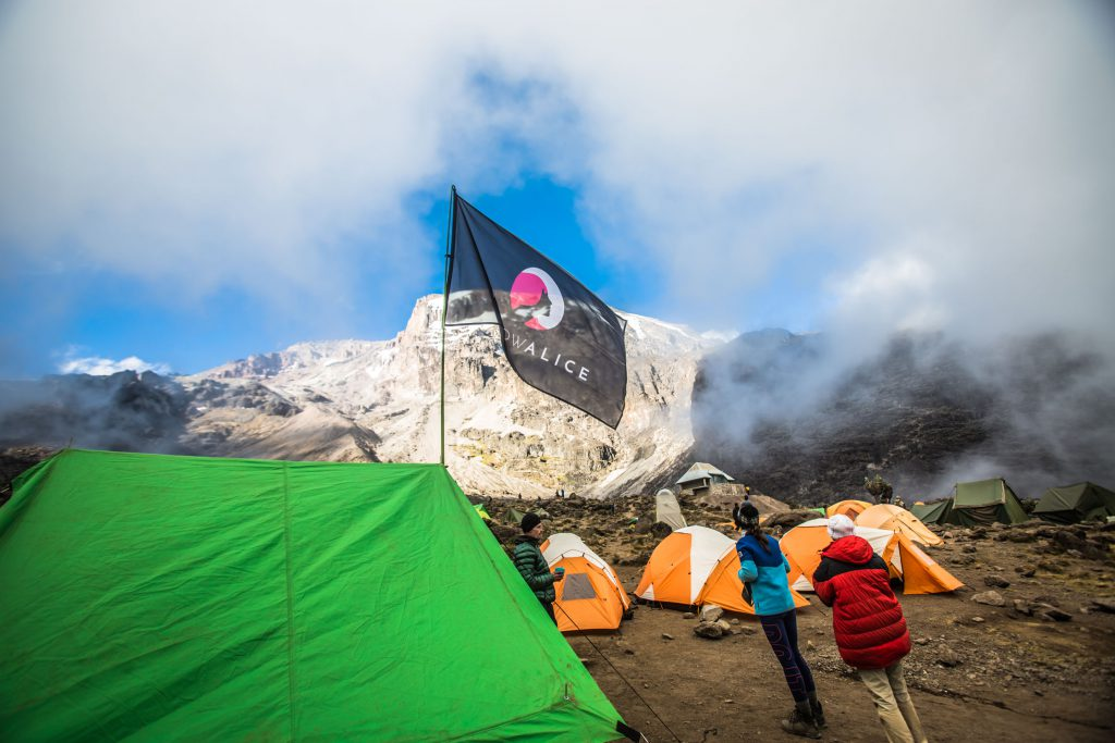 Trekkers wearing warm gear around camp on Kilimanjaro