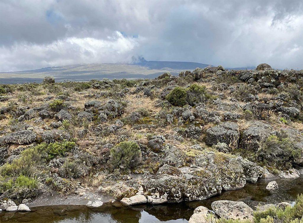 Kilimanjaro Climb Scenery Shira Camp 2