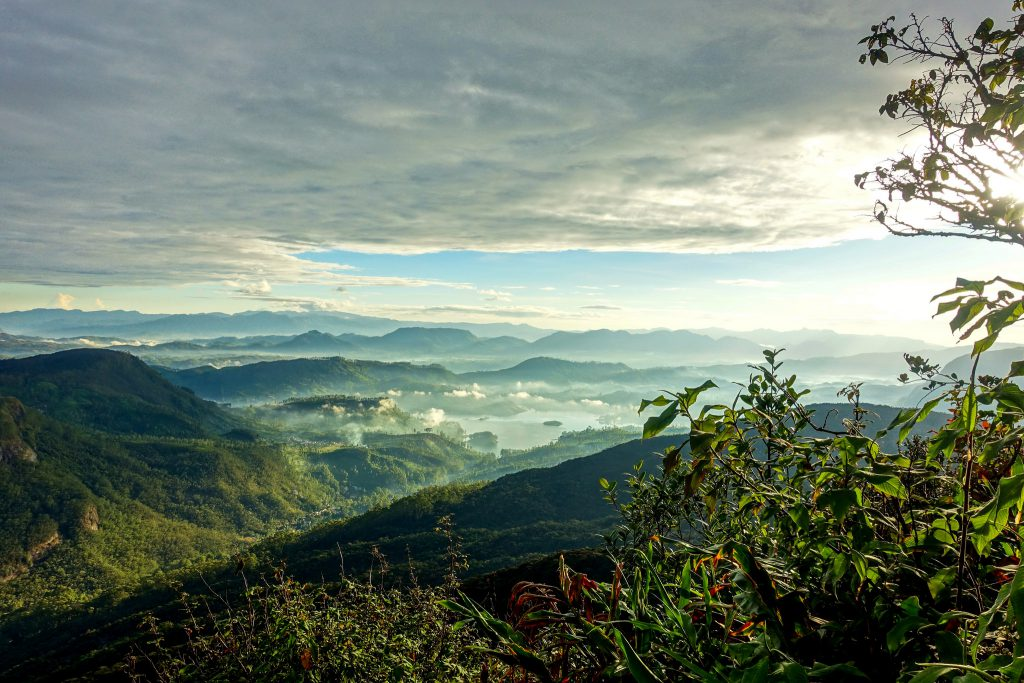 View from Adam's Peak in Sri Lanka