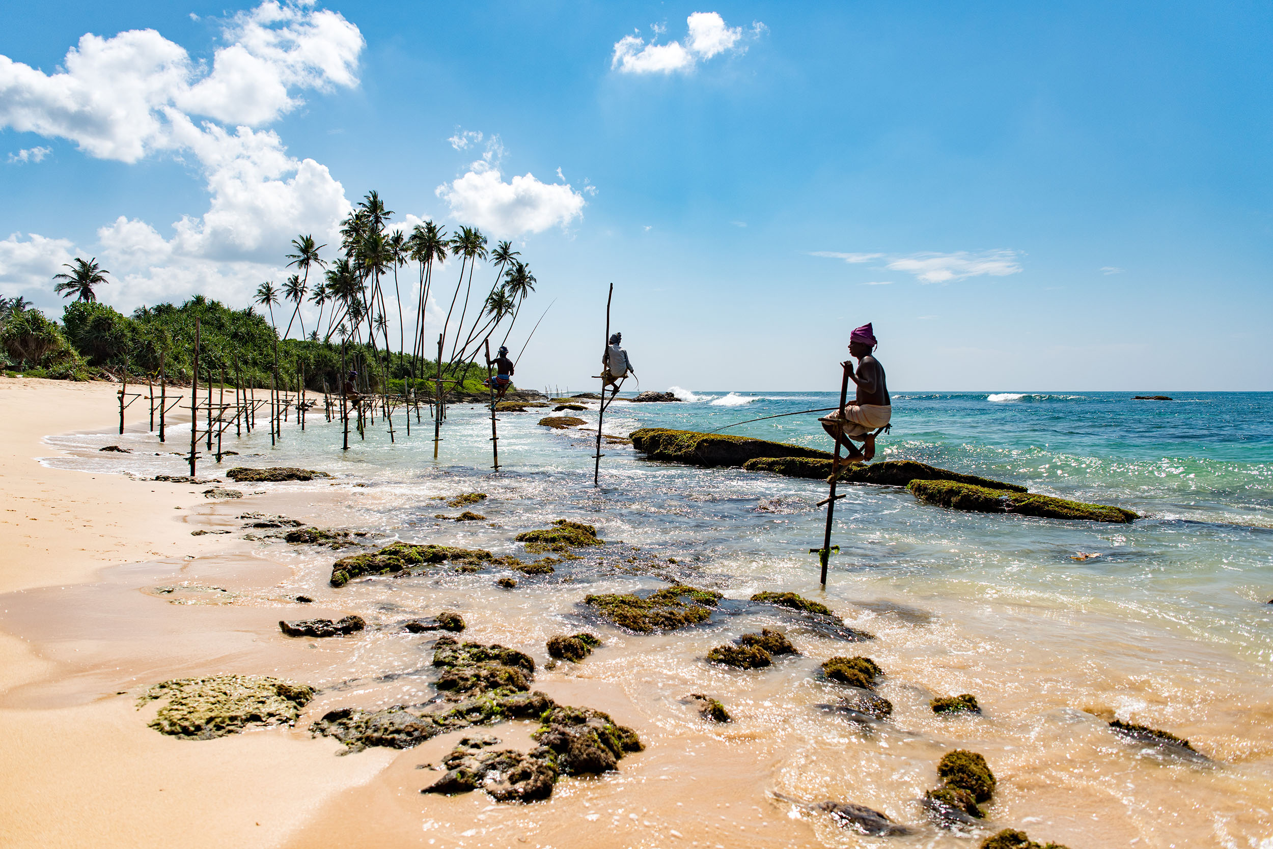 Stilt fisherman on the South Coast of Welligama