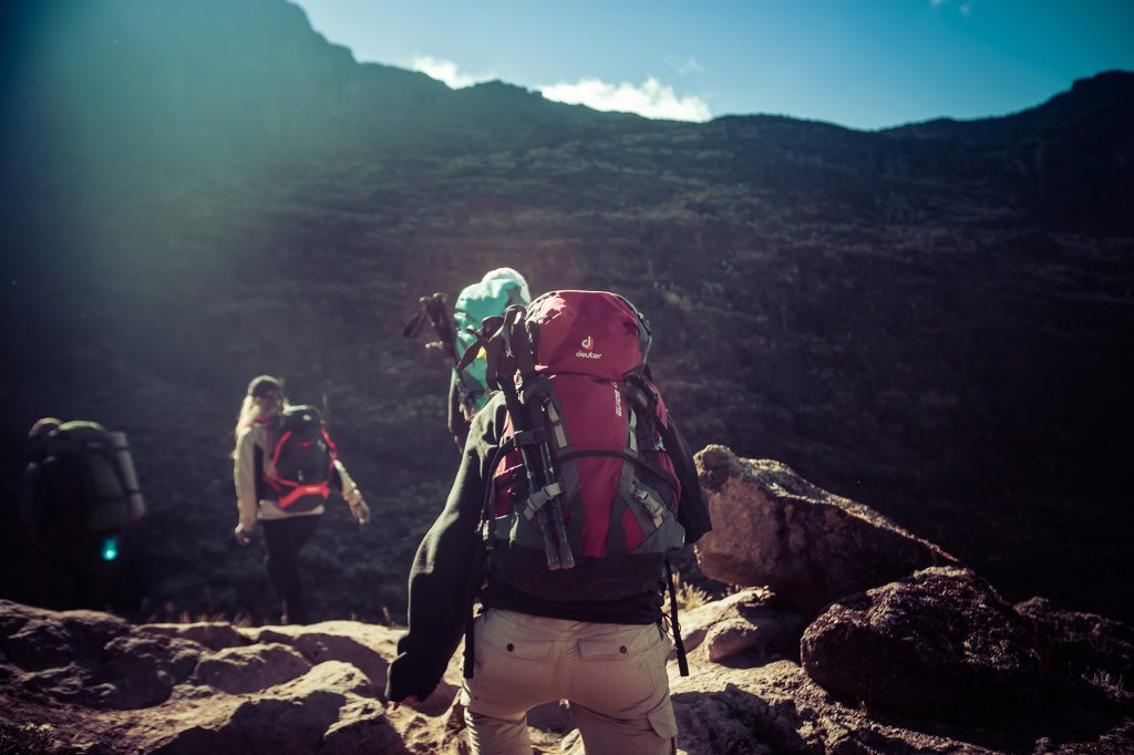 Climber Trekking up Kilimanjaro