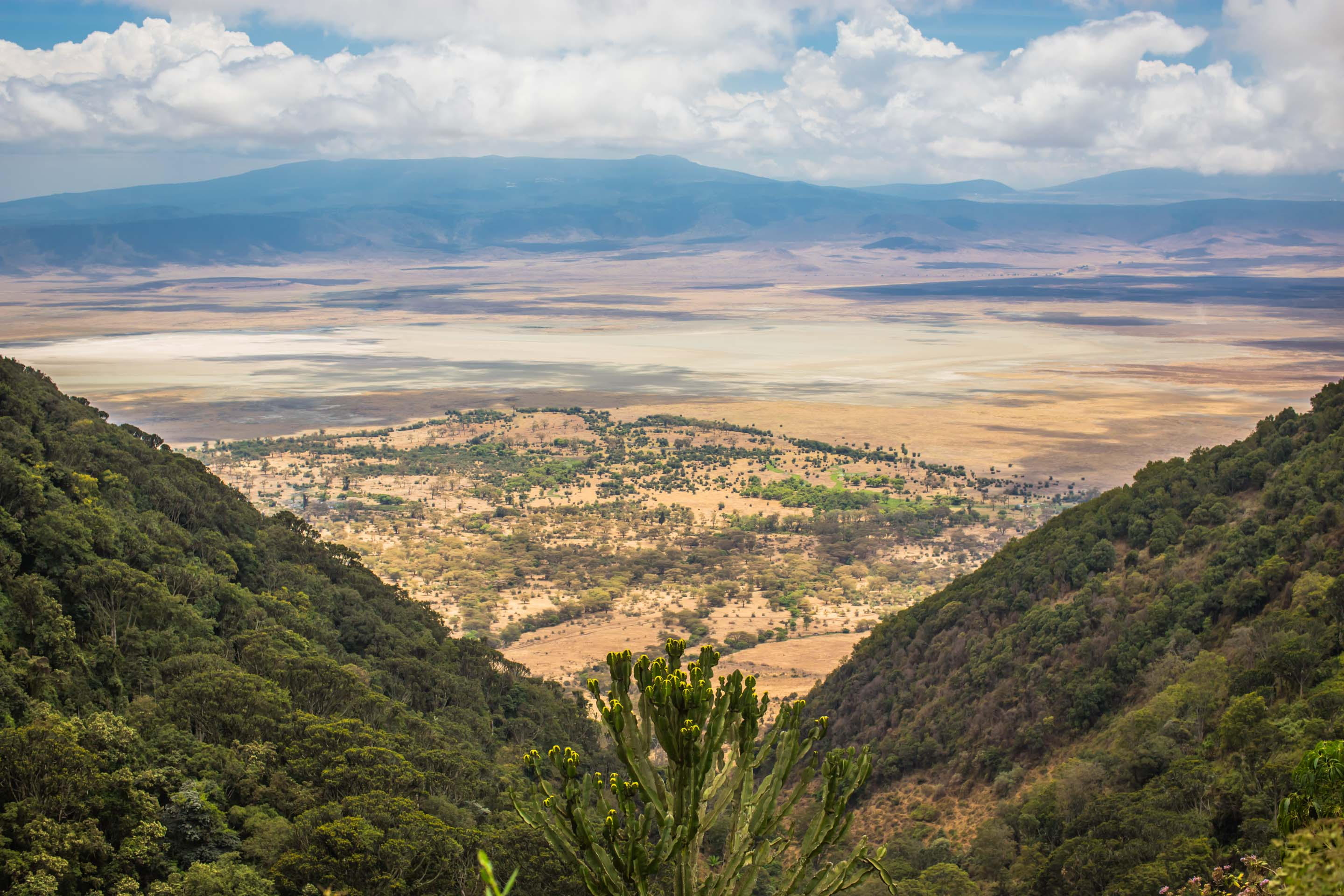 Sweeping views over the Ngorogoro crater