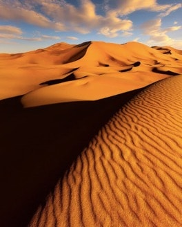 View of The Sahara Desert