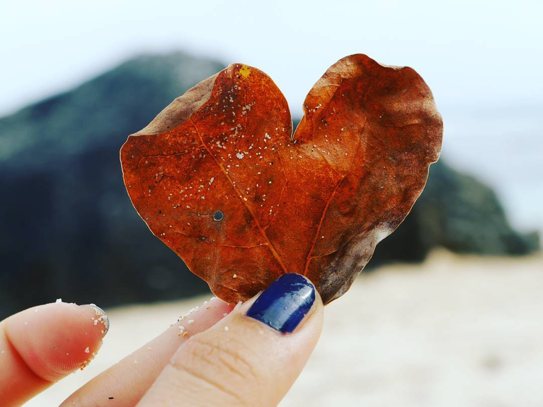 Picture of a heart in the shape of a leaf