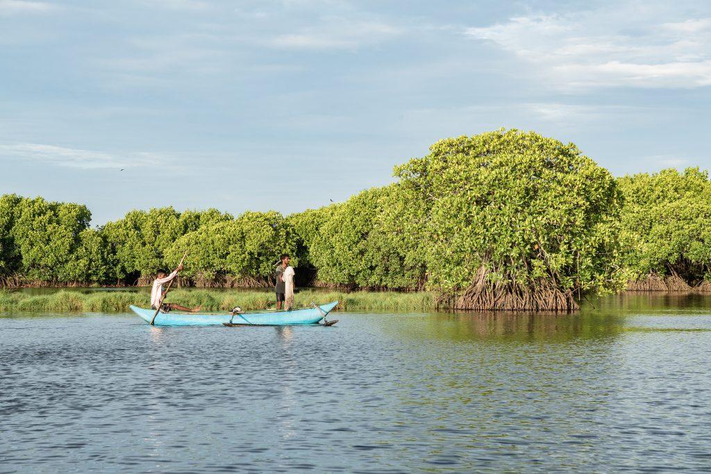 Lagoon in Sri Lanka