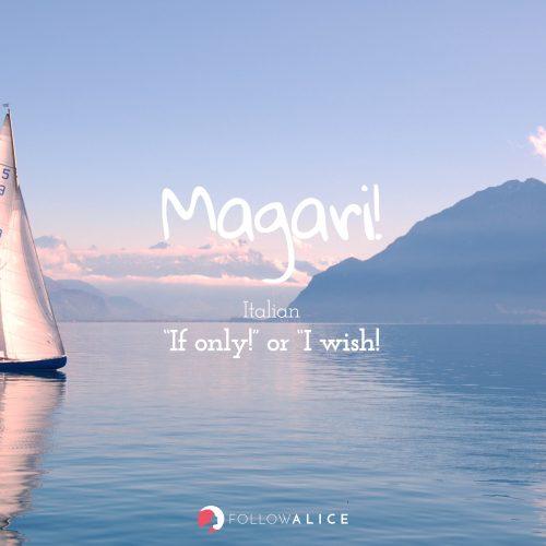 Follow Alice travel quotes - Magari