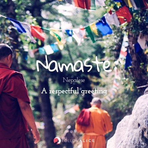 Follow Alice travel quotes - Namaste