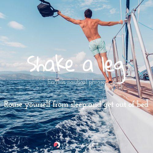 Follow Alice travel quotes - Shake a Leg