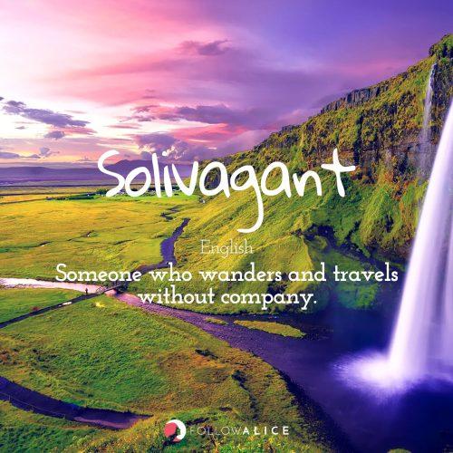 Follow Alice travel quotes - Solivagant
