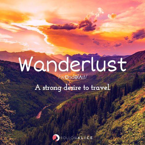 Follow Alice travel quotes - Wanderlust