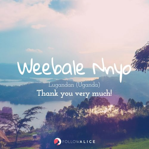 Follow Alice travel quotes - Weebale Nnyo