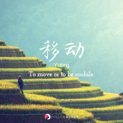 Follow Alice travel quotes - Yídòng