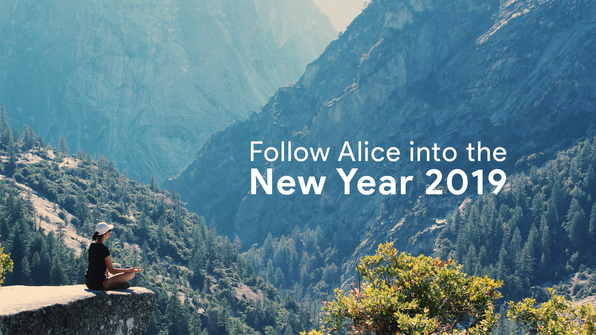 Follow Alice into the New Year 2019