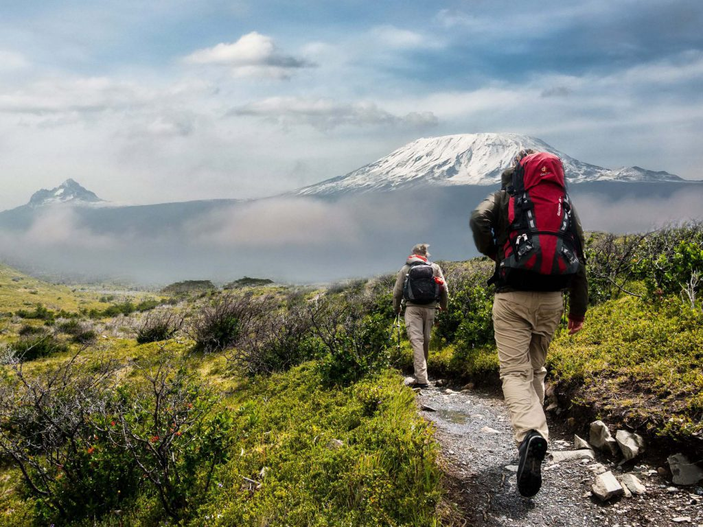Trekkers heading towards Mt Kilimanjaro