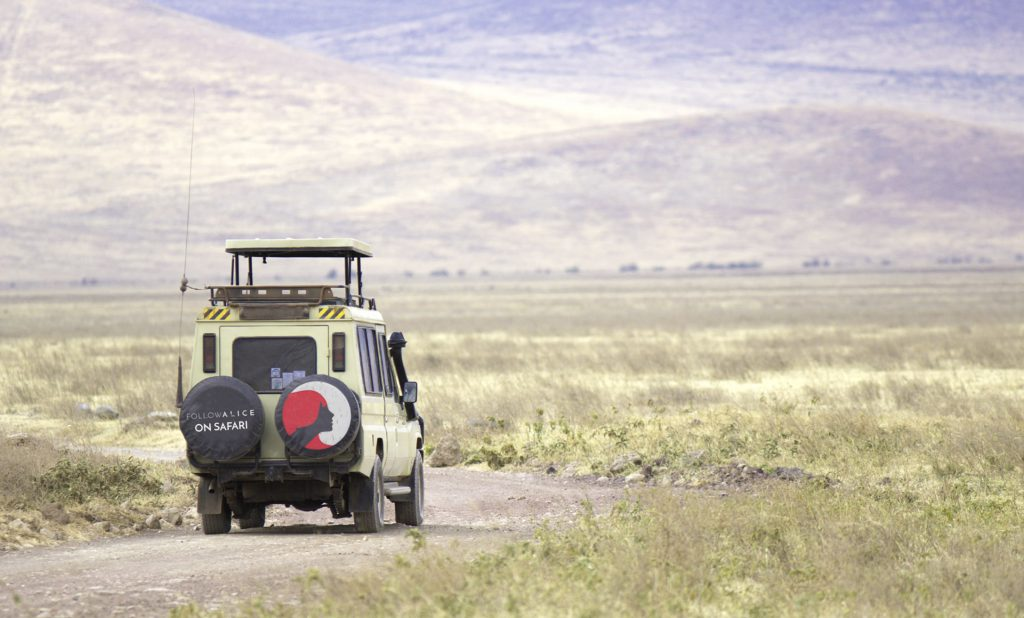 Adventure safari drive in Africa