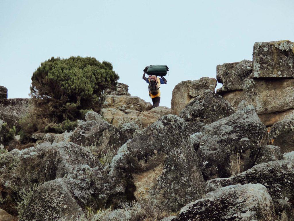 Porter walking up Kilimanjaro route