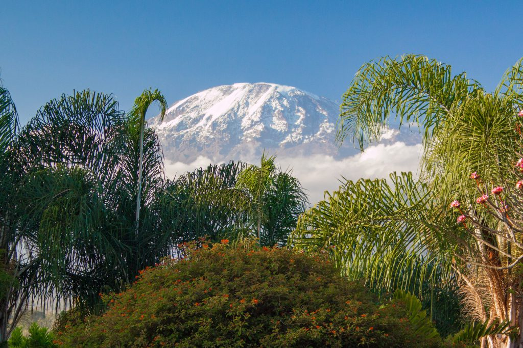 Mt Kilimanjaro from a distance